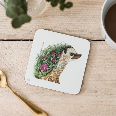 Coasters DM Hedgehog