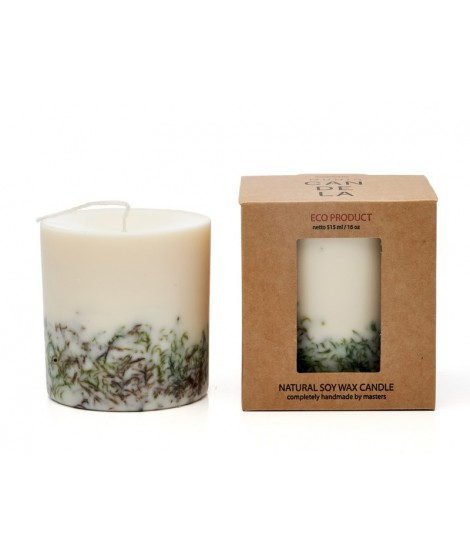 Candle Naturella Moss 515ml