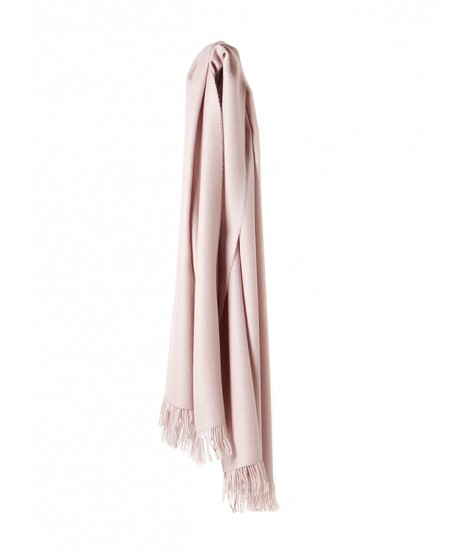 Scarf Traveller rose